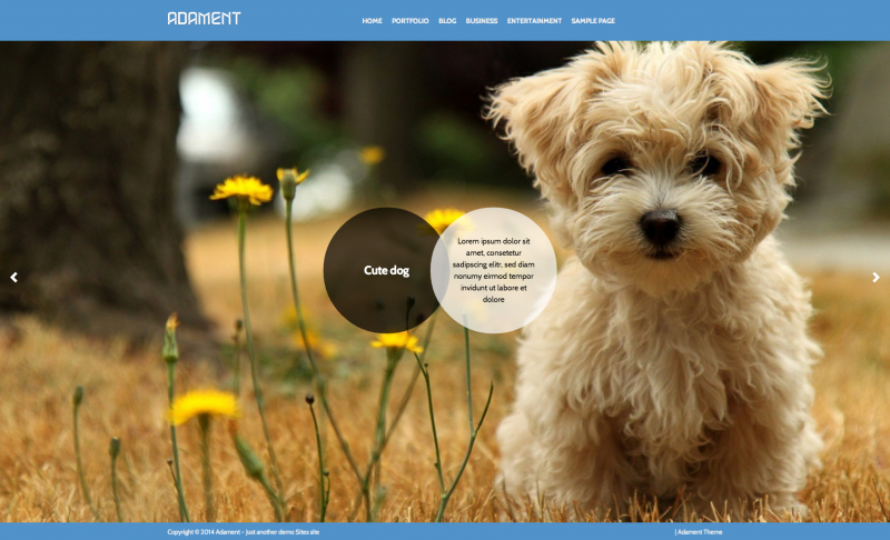 Adament wp theme