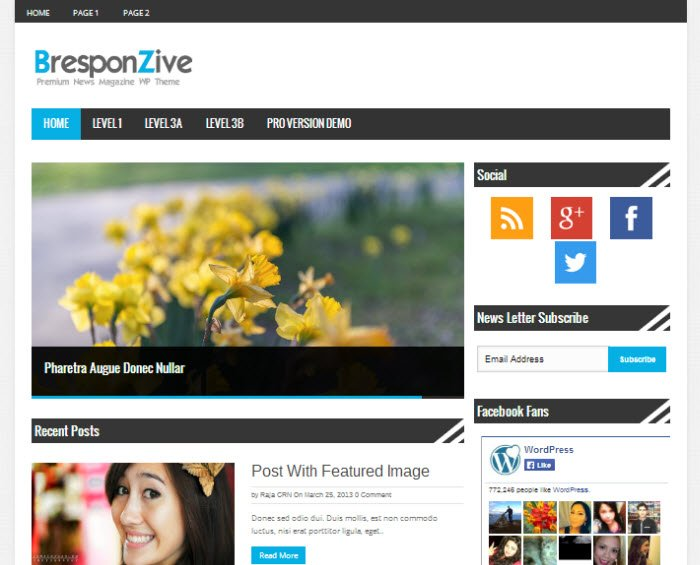 Bresponzive wordpress theme