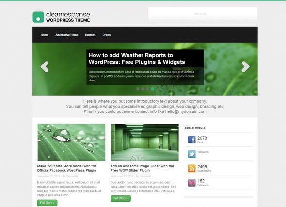 CleanResponse WP theme