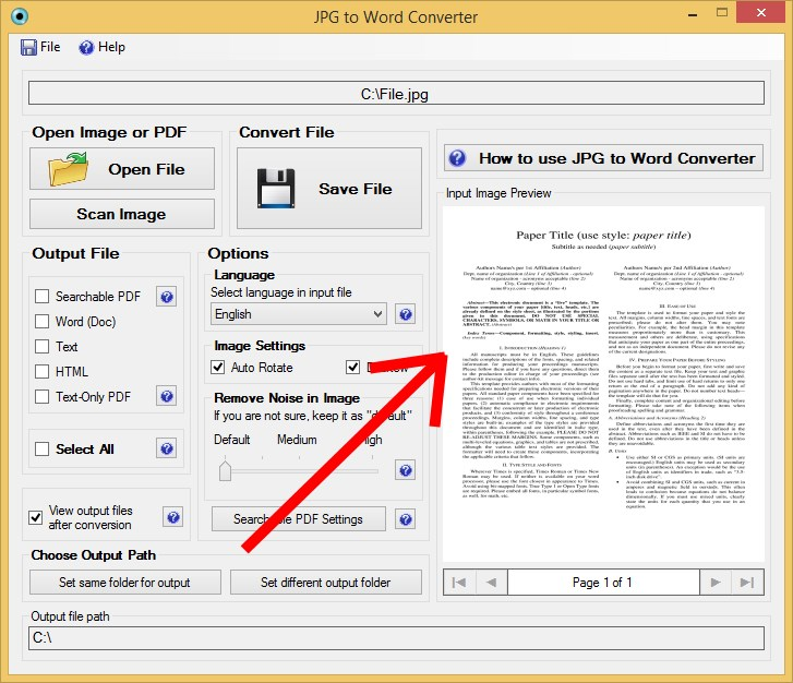 Convert JPG to Word Input Preview