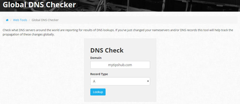 Nexcess Global Dns Checker Tool