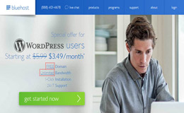 BlueHost-Best-WordPress-Hosting