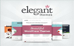 Elegant-Wordpress-Themes
