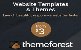 Theme Forest Marketplace