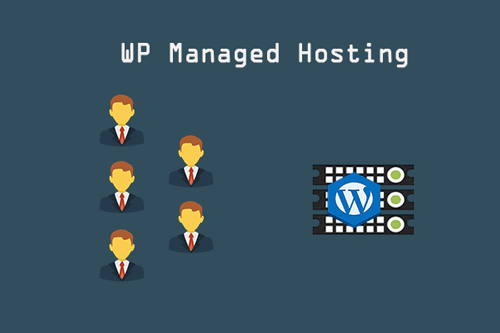 Wordpress-Managed-Web-Hosting