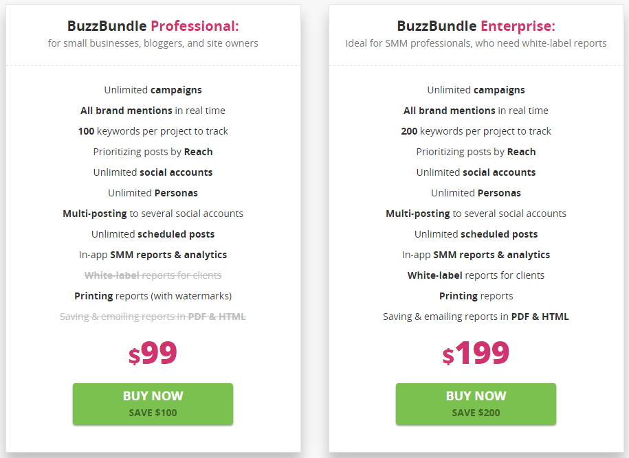 Professional vs Enterprise BuzzBundle
