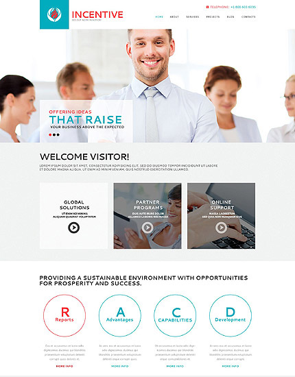 Incentive WP Theme for business