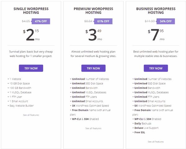 Wordpress Hosting hostinger