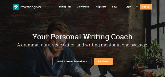 ProWritingAid premium grammarly alternative