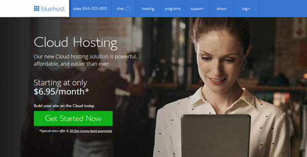 bluehost overall best cpanel hosting